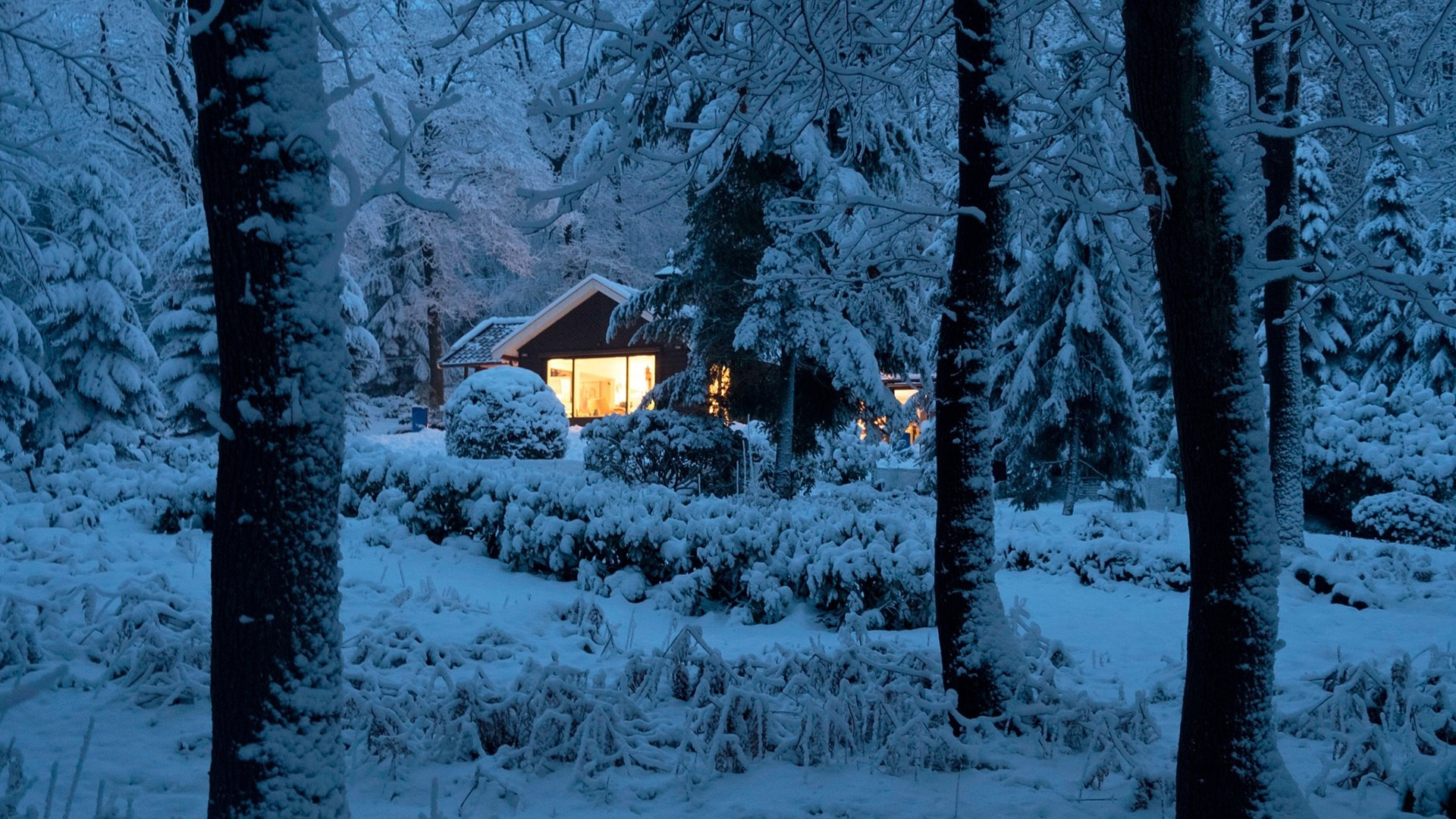 House in a snowy forest wallpaper