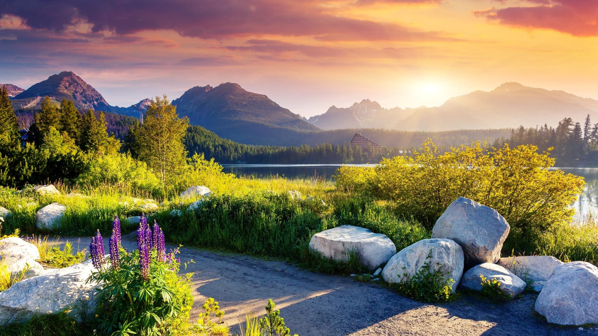 Strbske Pleso Tatra National Park Hd Wallpaper Backiee Free