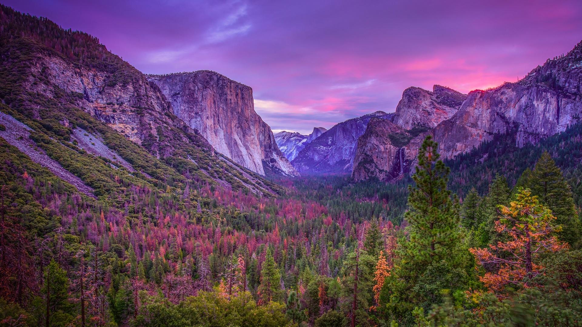 Yosemite Valley purple landscape wallpaper