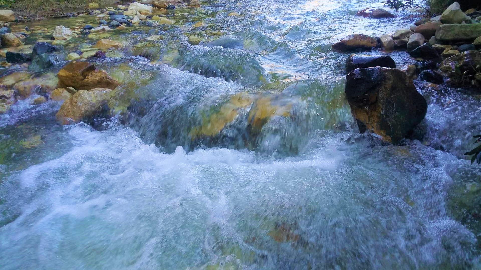 The River wallpaper