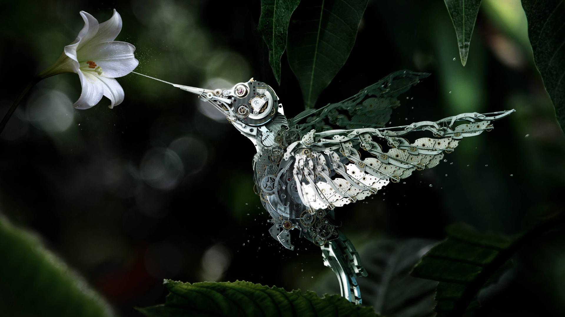Steampunk mechanical hummingbird wallpaper