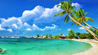 Quang Nam beach wallpaper