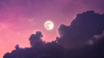 Purple moonlight wallpaper