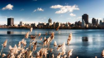 Upper Lake in New York Central Park wallpaper