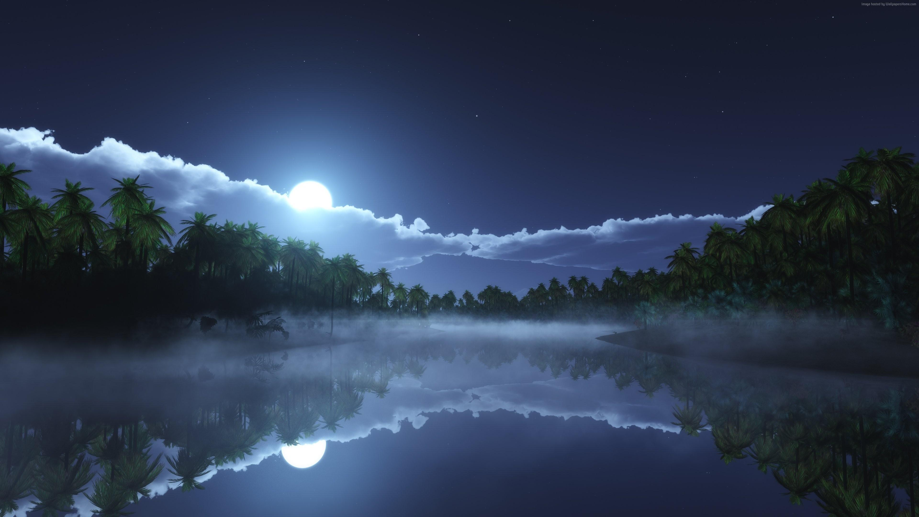 Tropical night reflection wallpaper