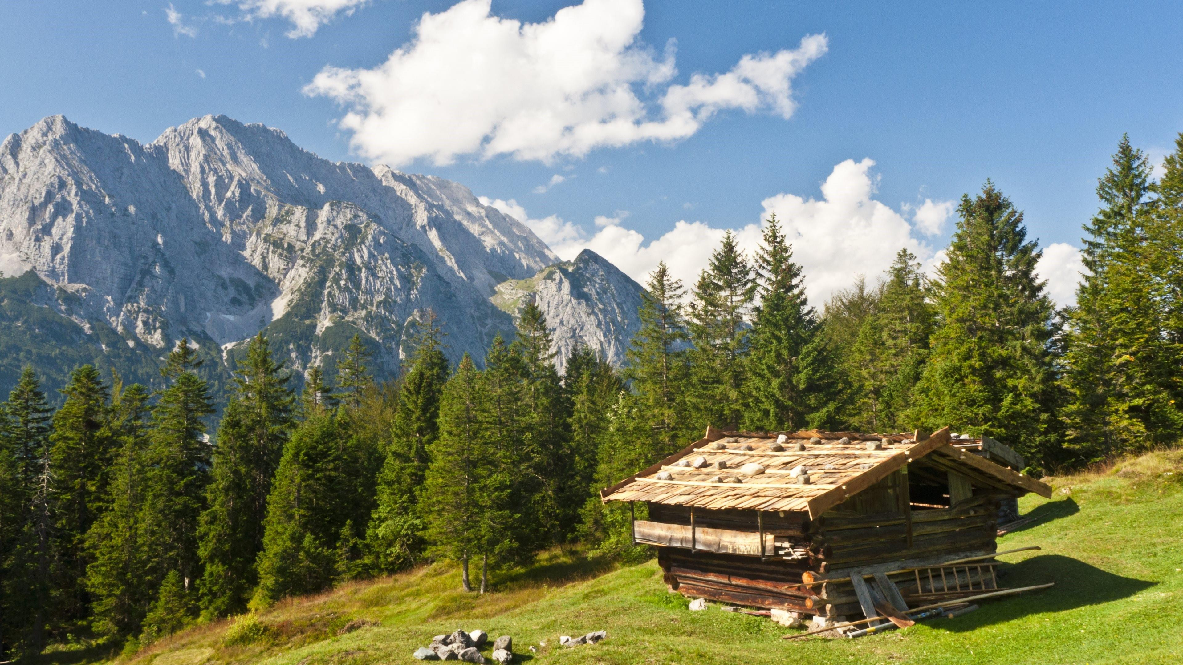 Small wooden cabin in the forest from Bavaria wallpaper