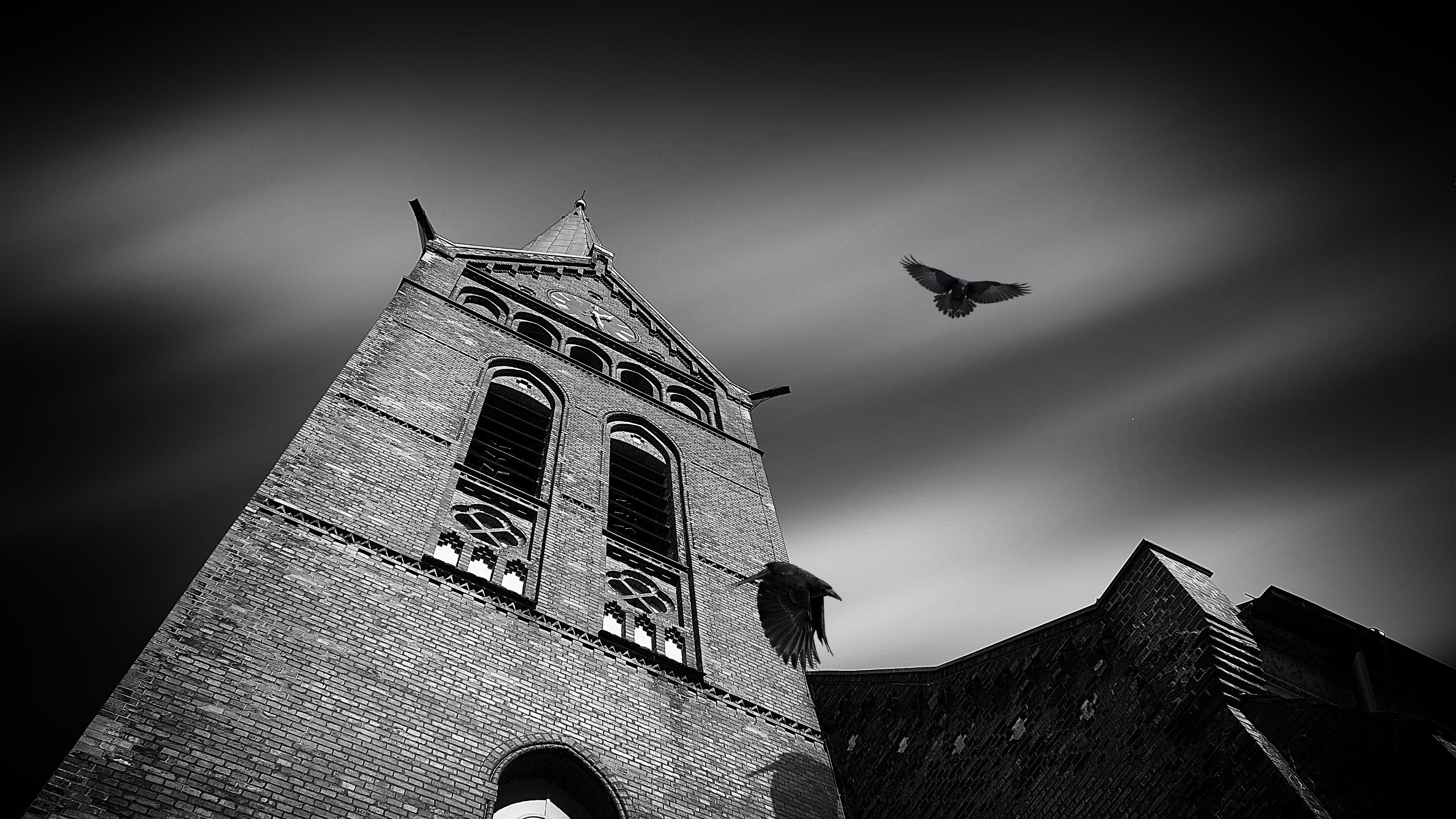 Creepy and haunted tower with ravens wallpaper