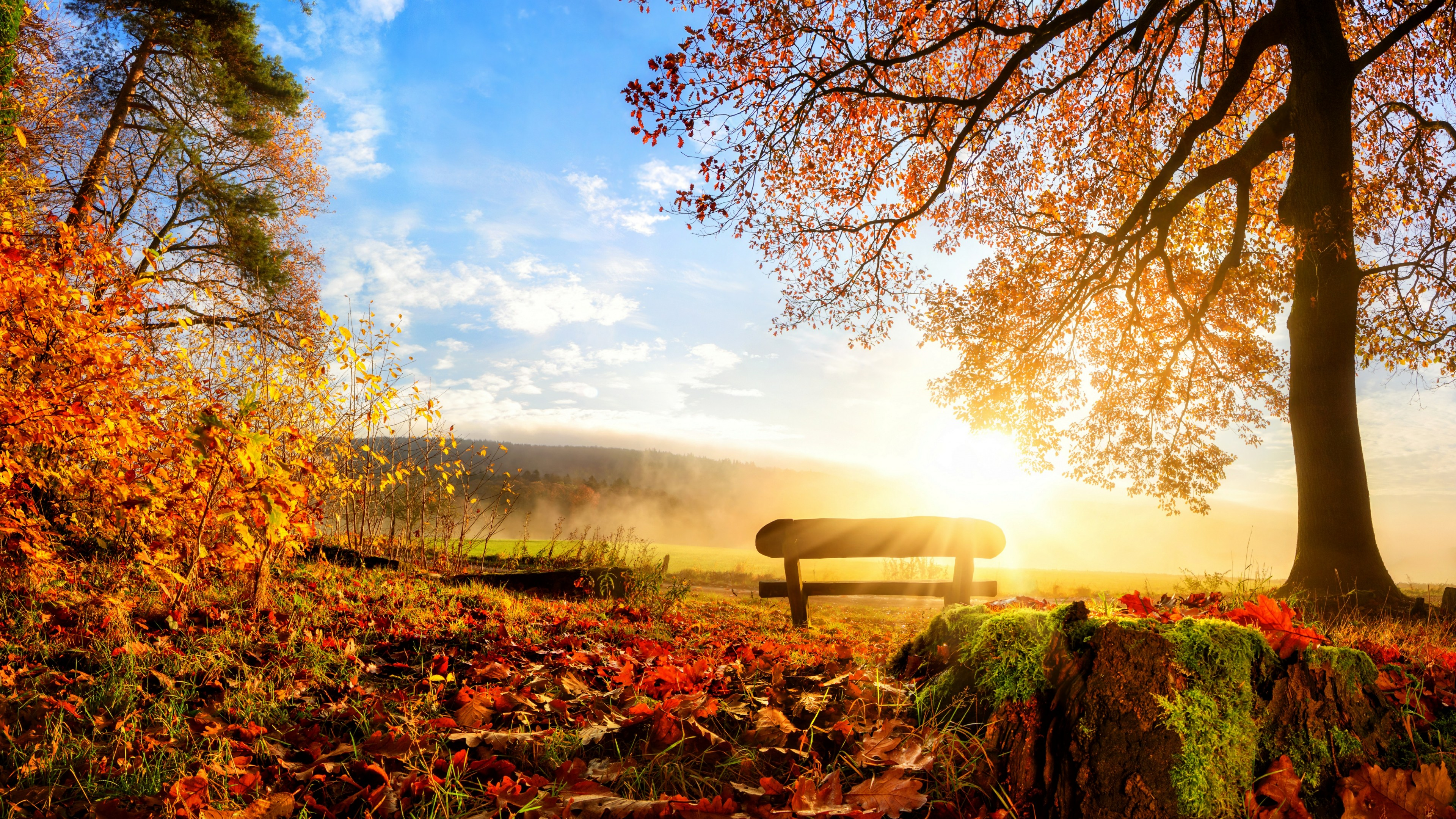 Bench in the autumn sunrise wallpaper