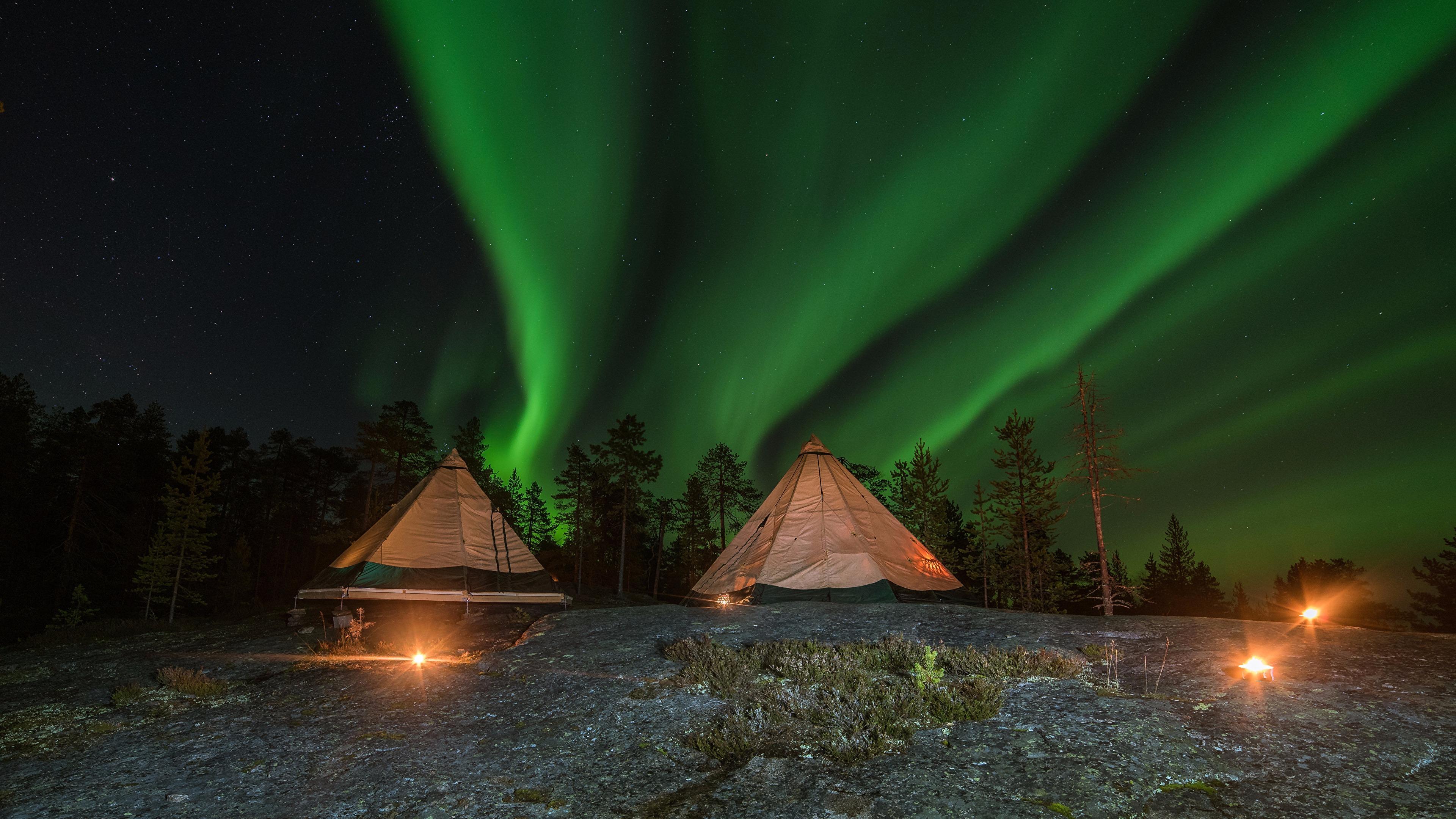 Green Northern Lights in Lapland wallpaper