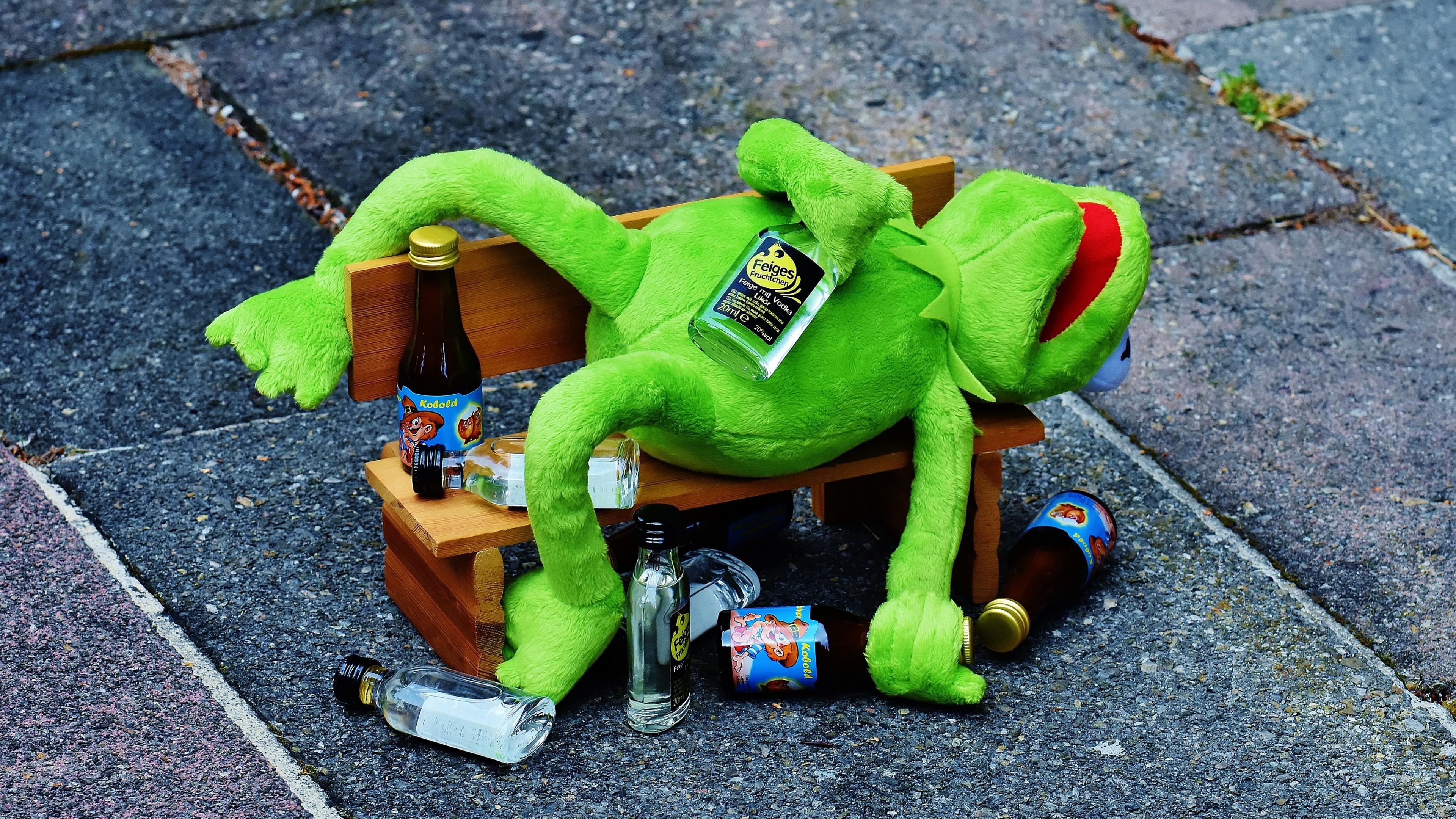 Drunk Kermit the Frog wallpaper