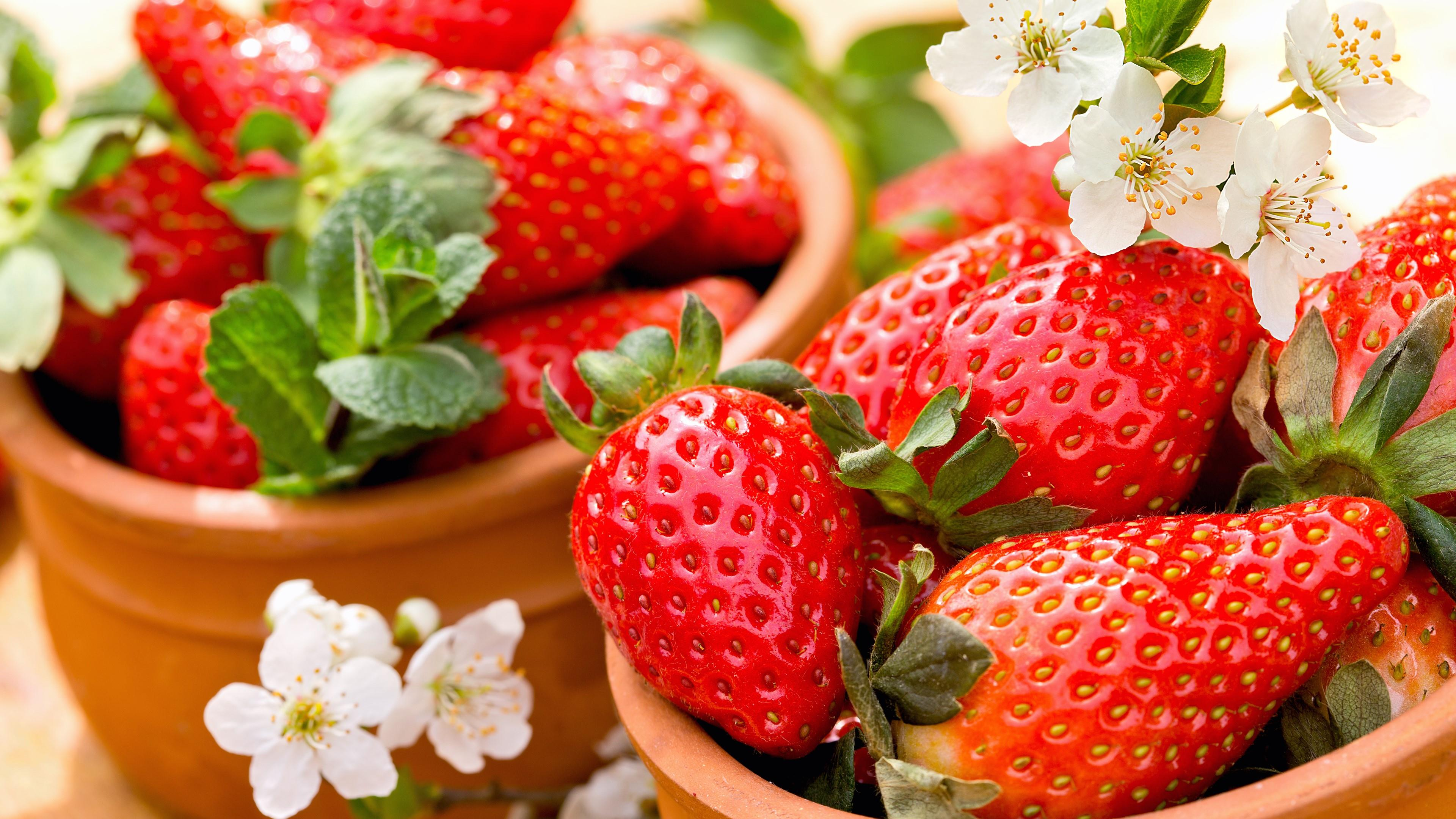 Strawberries and flowers wallpaper