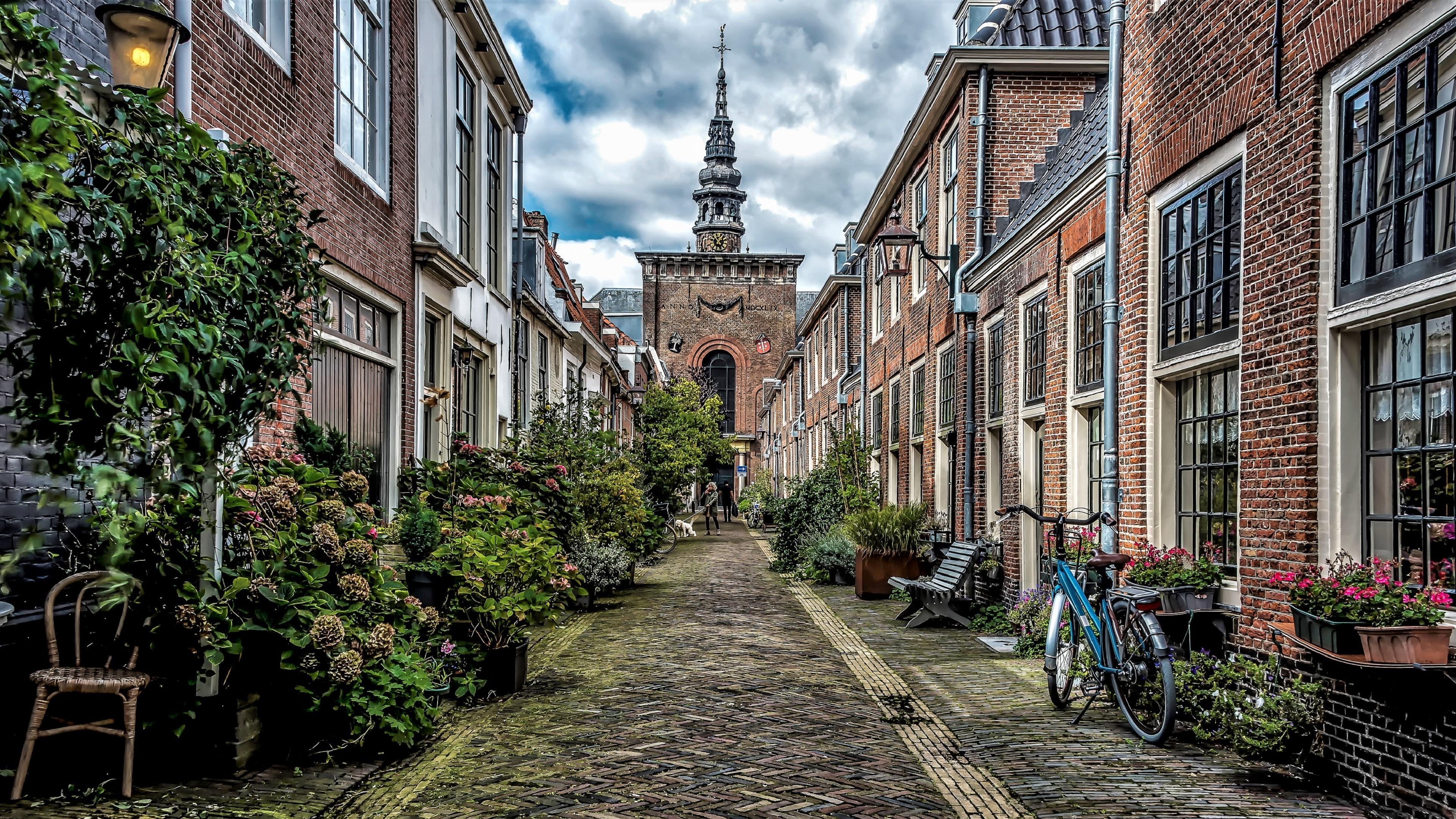 Haarlem street view, Netherlands wallpaper