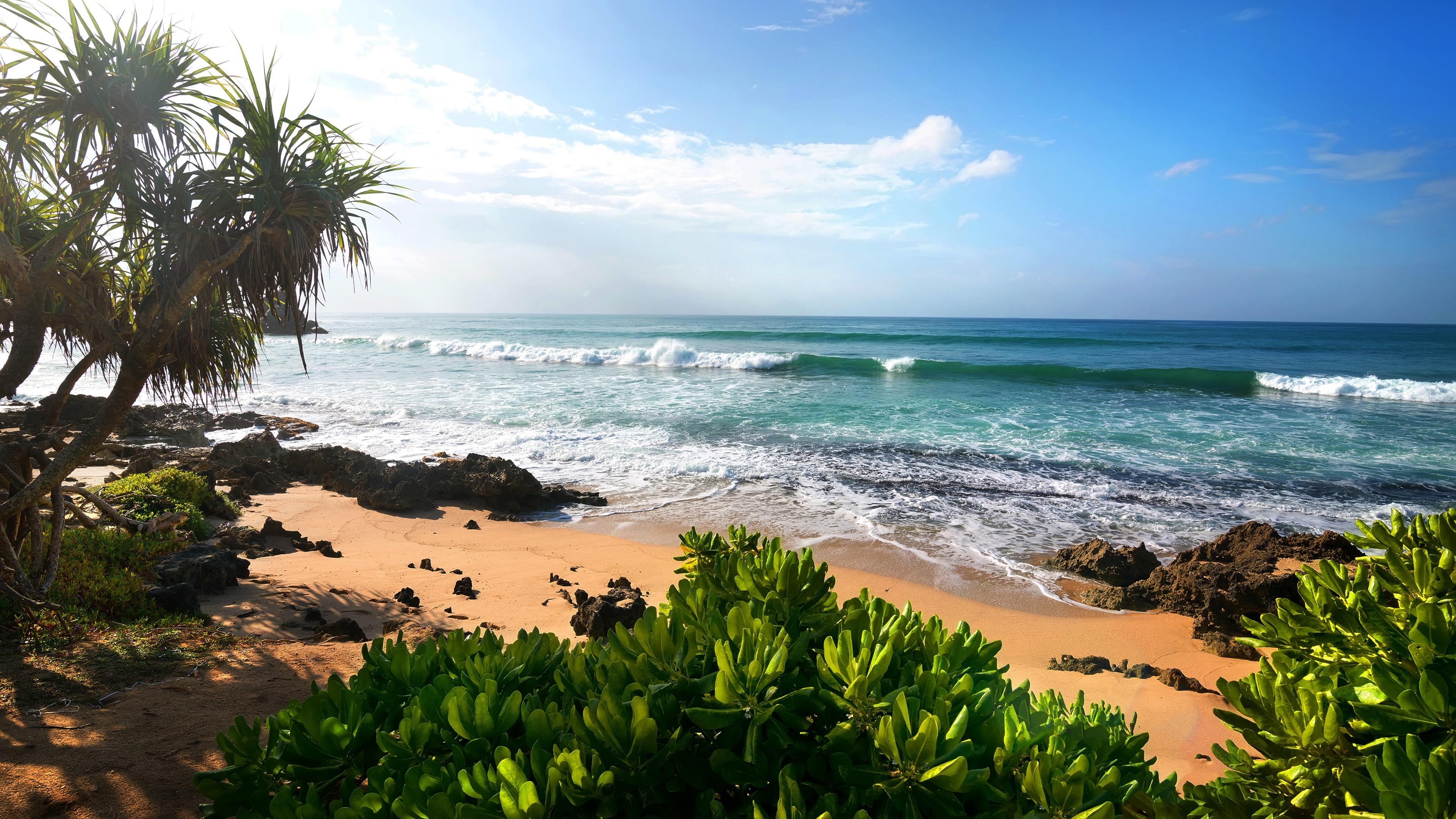 Tropical Summer Beach 4K UltraHD Wallpaper - backiee