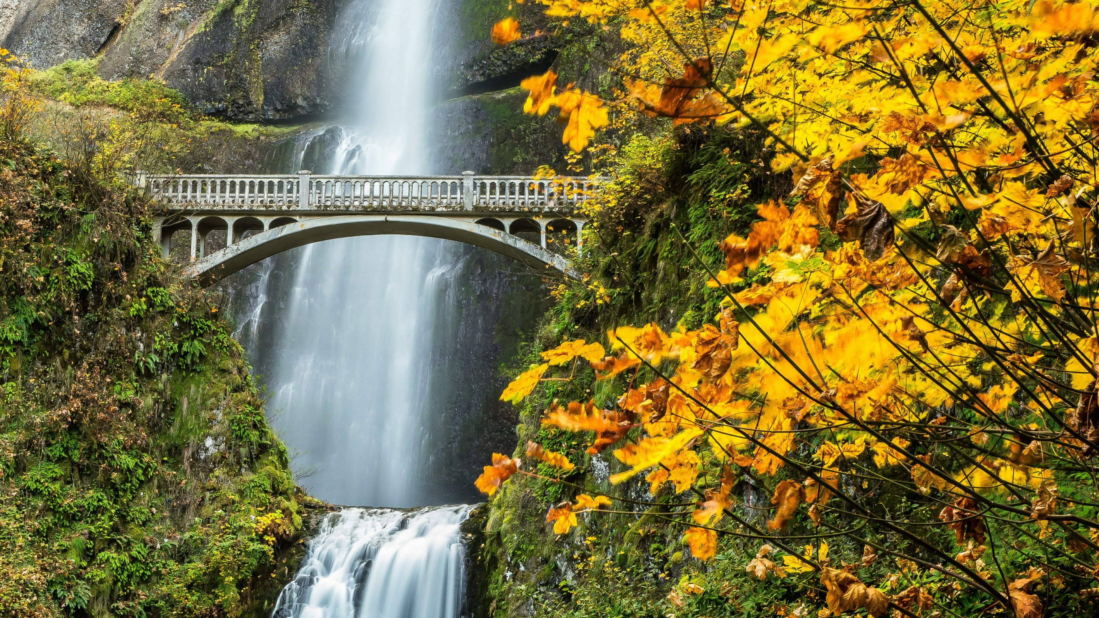 Benson Footbridge at Multnomah Falls (Oregon) wallpaper