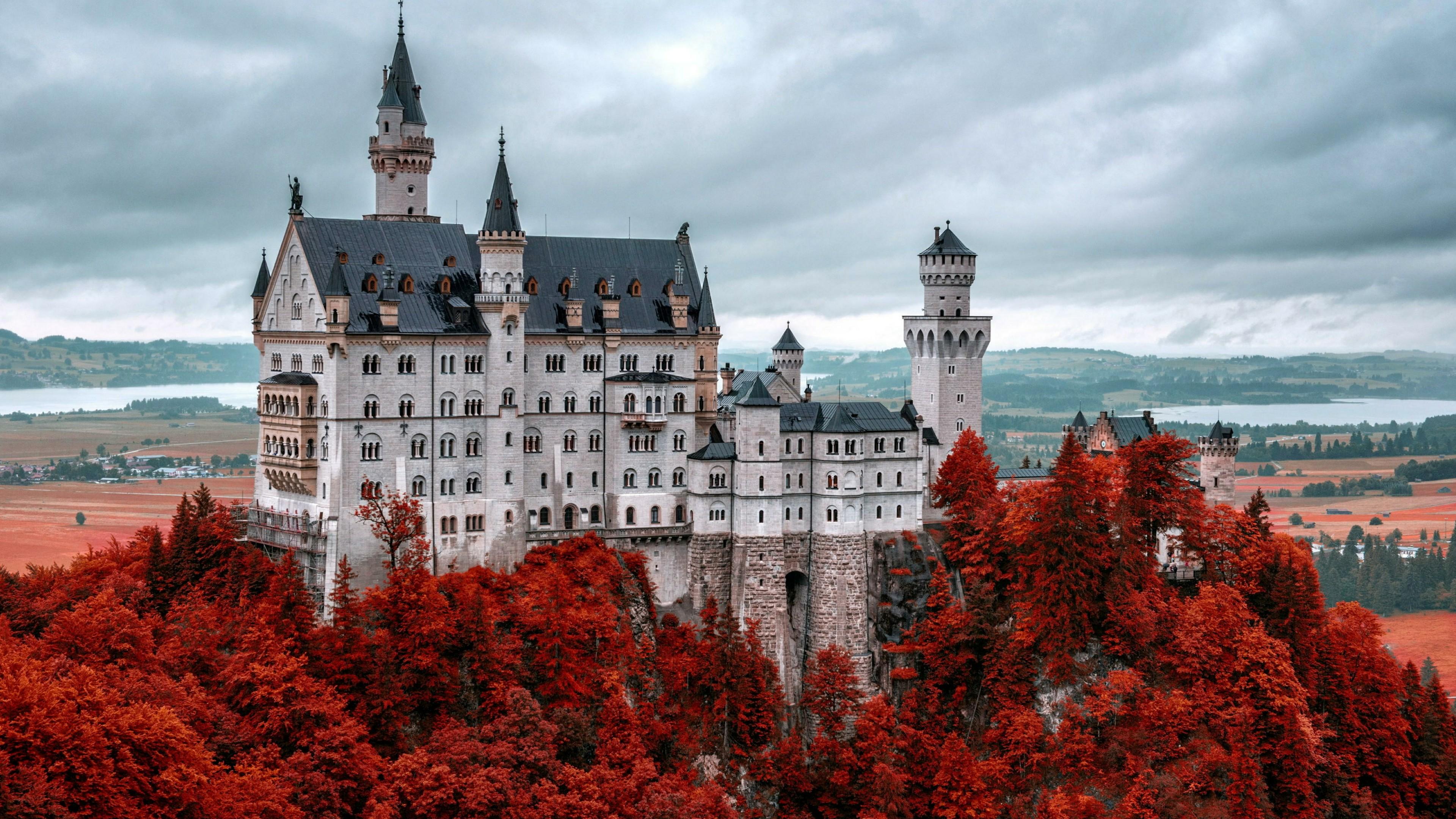 Red autumn trees around Neuschwanstein Castle wallpaper