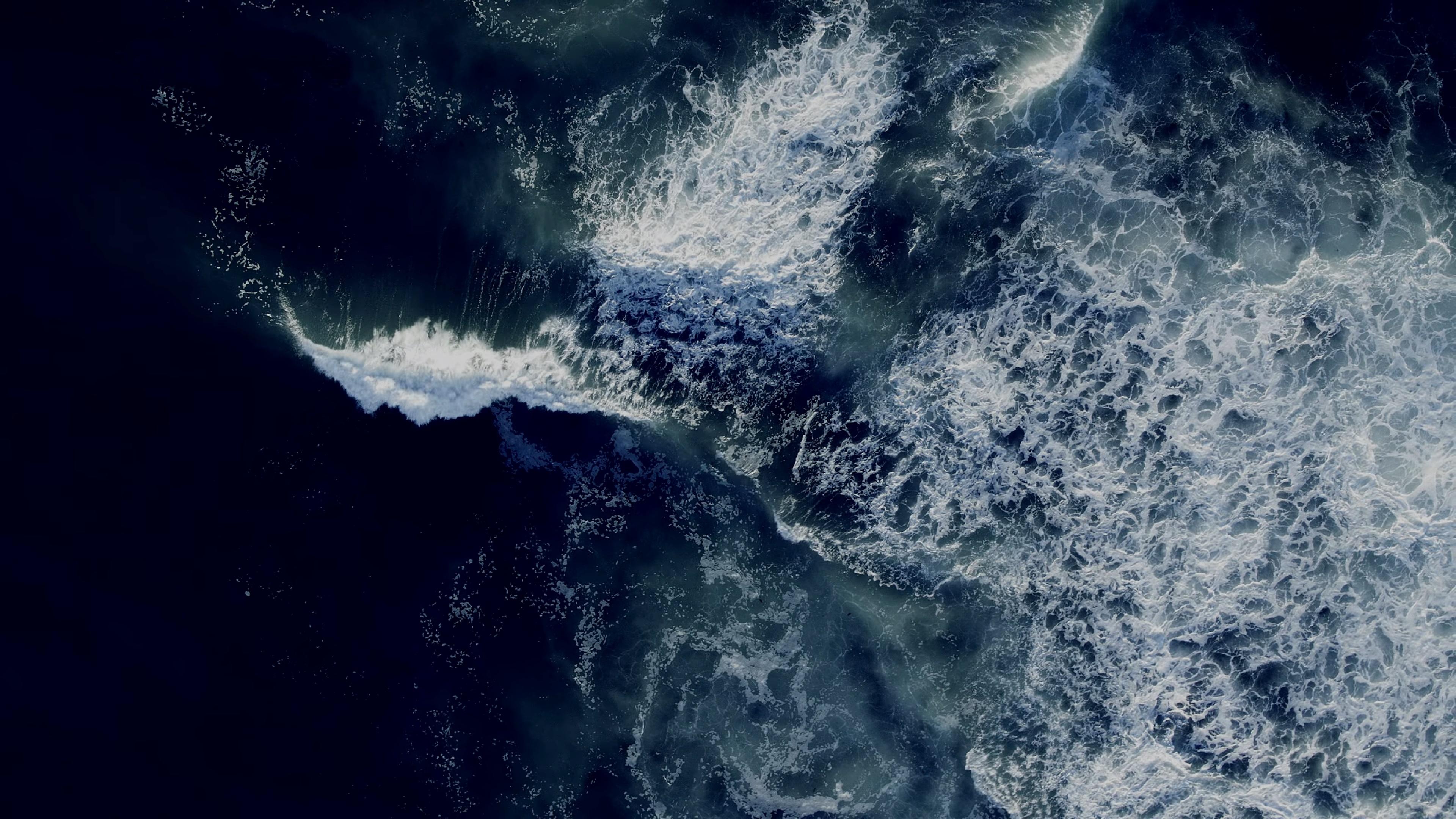 Sea Brave wallpaper