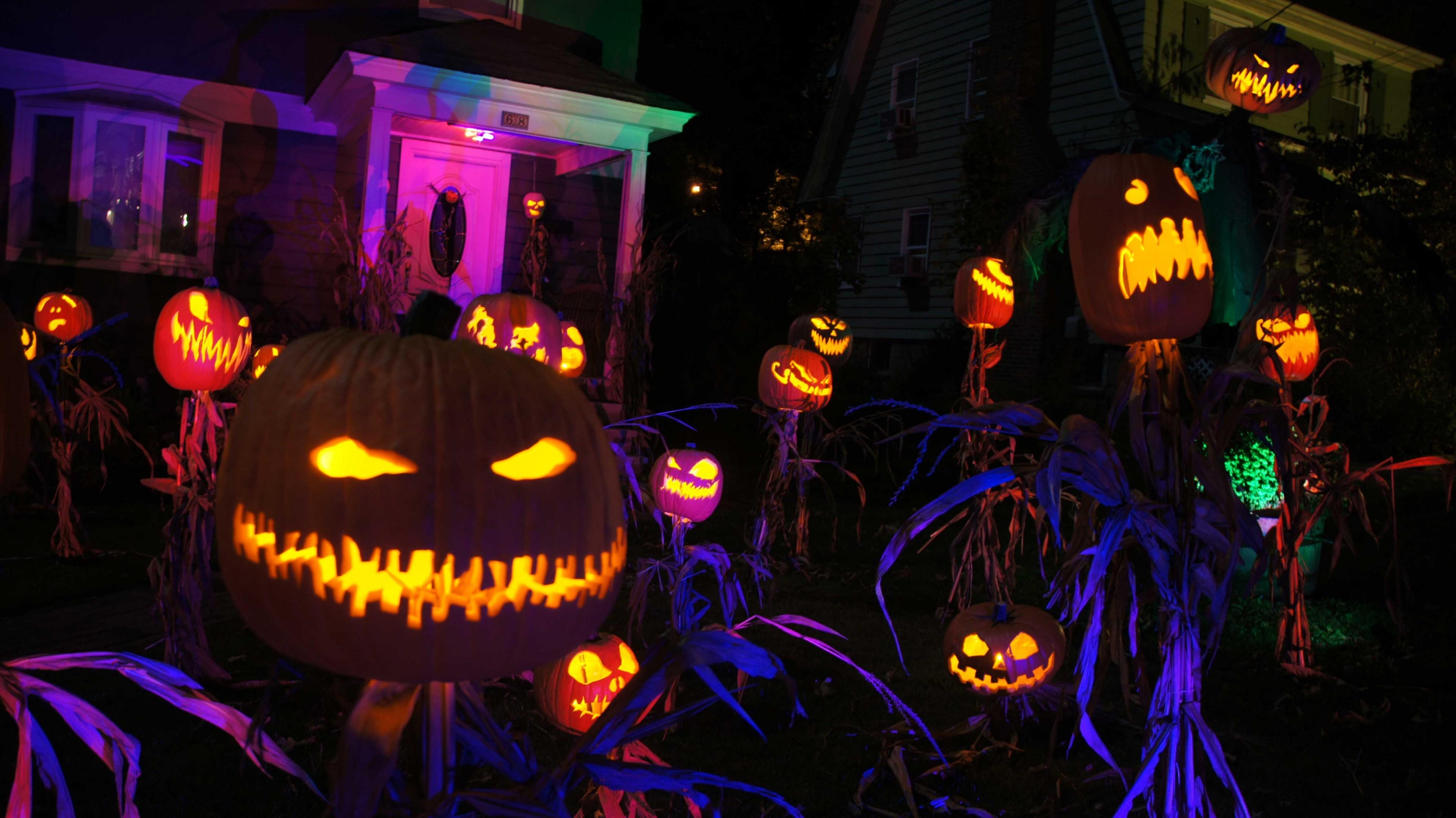 Spooky Jack O'lanterns in the garden wallpaper