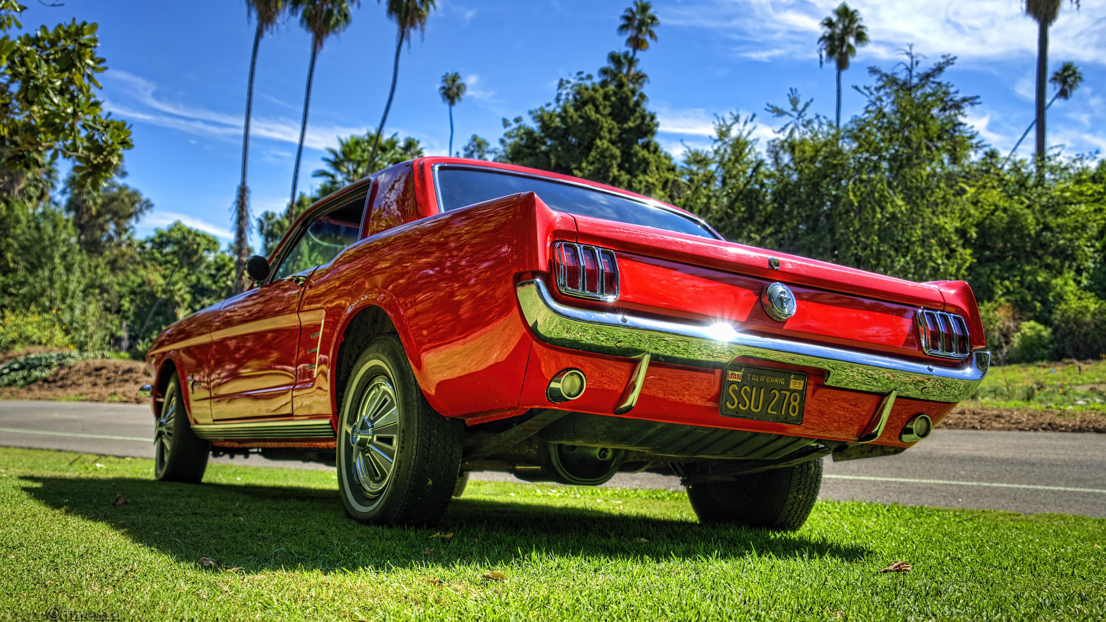 Ford Mustang Mach 1 4k Ultrahd Wallpaper Backiee Free Ultra Hd