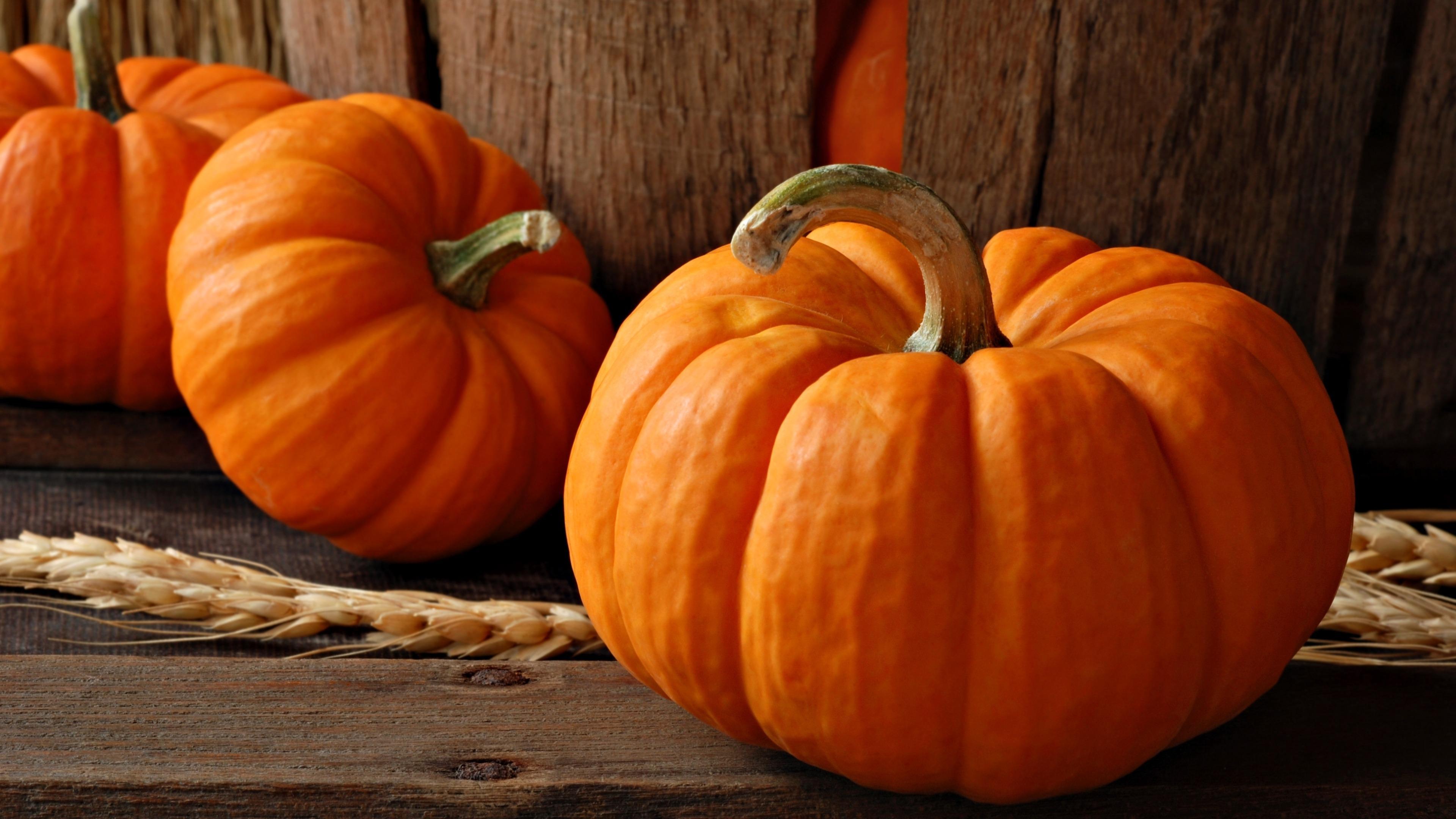Pumpkins wallpaper