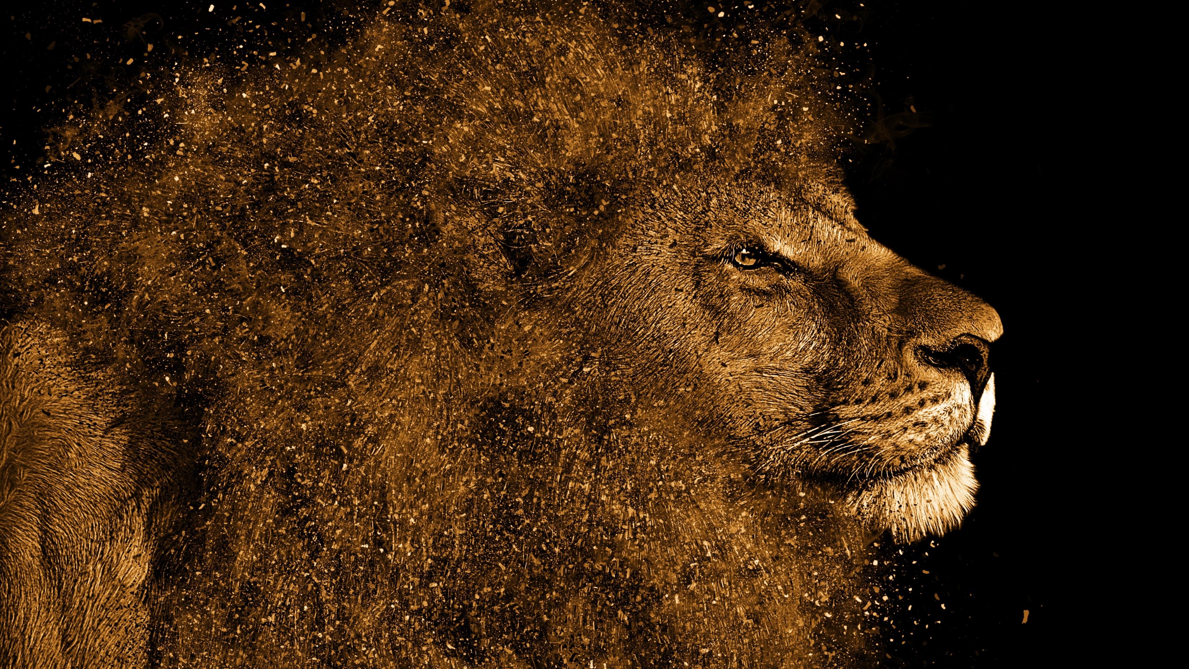 Lion art wallpaper