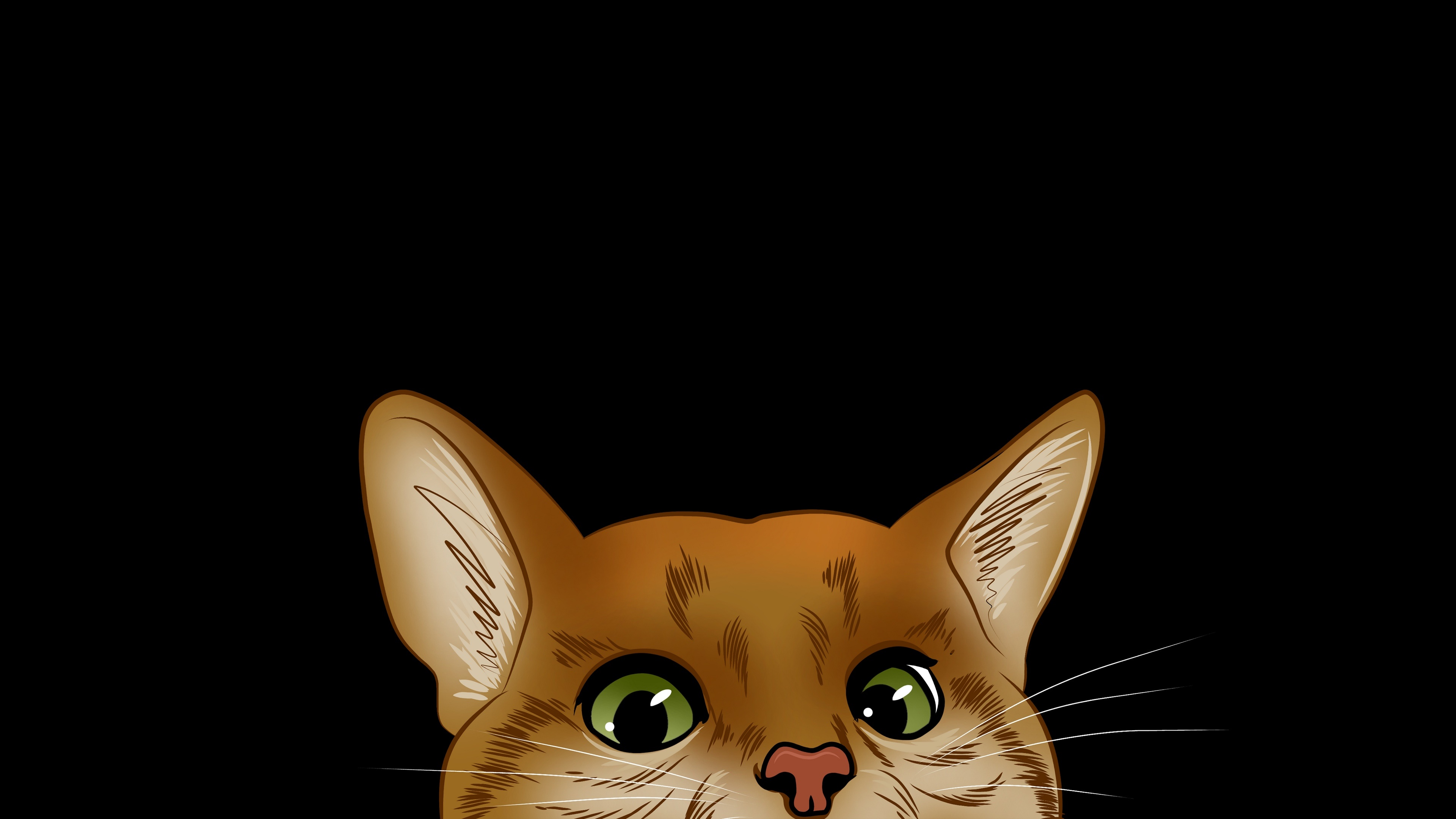 Peeping cat wallpaper