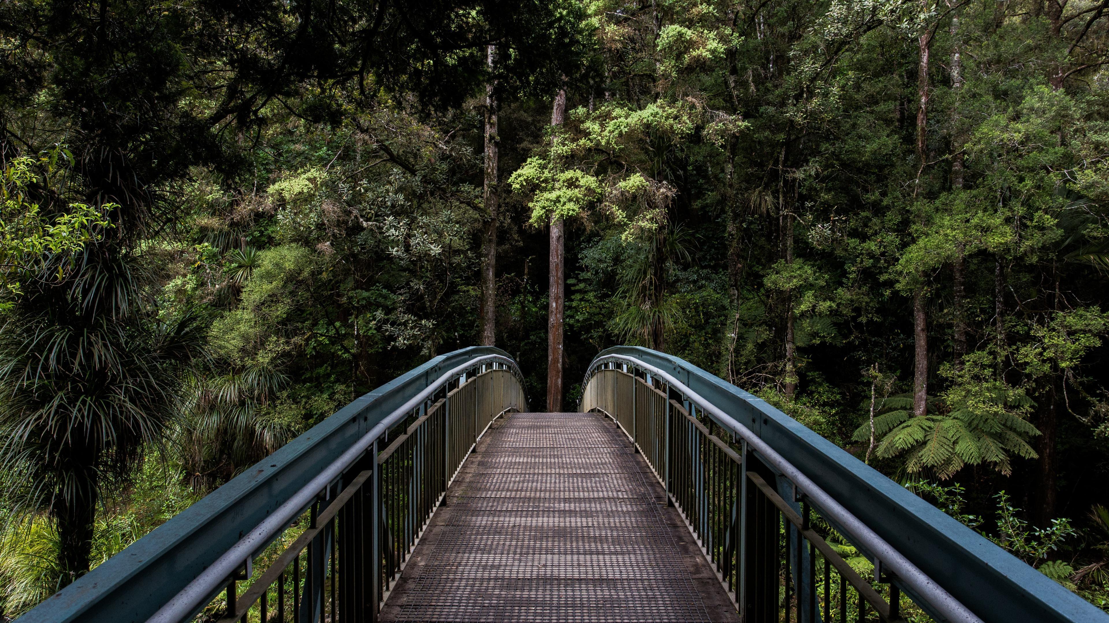 Bridge across Hatea River below Whangarei Falls wallpaper