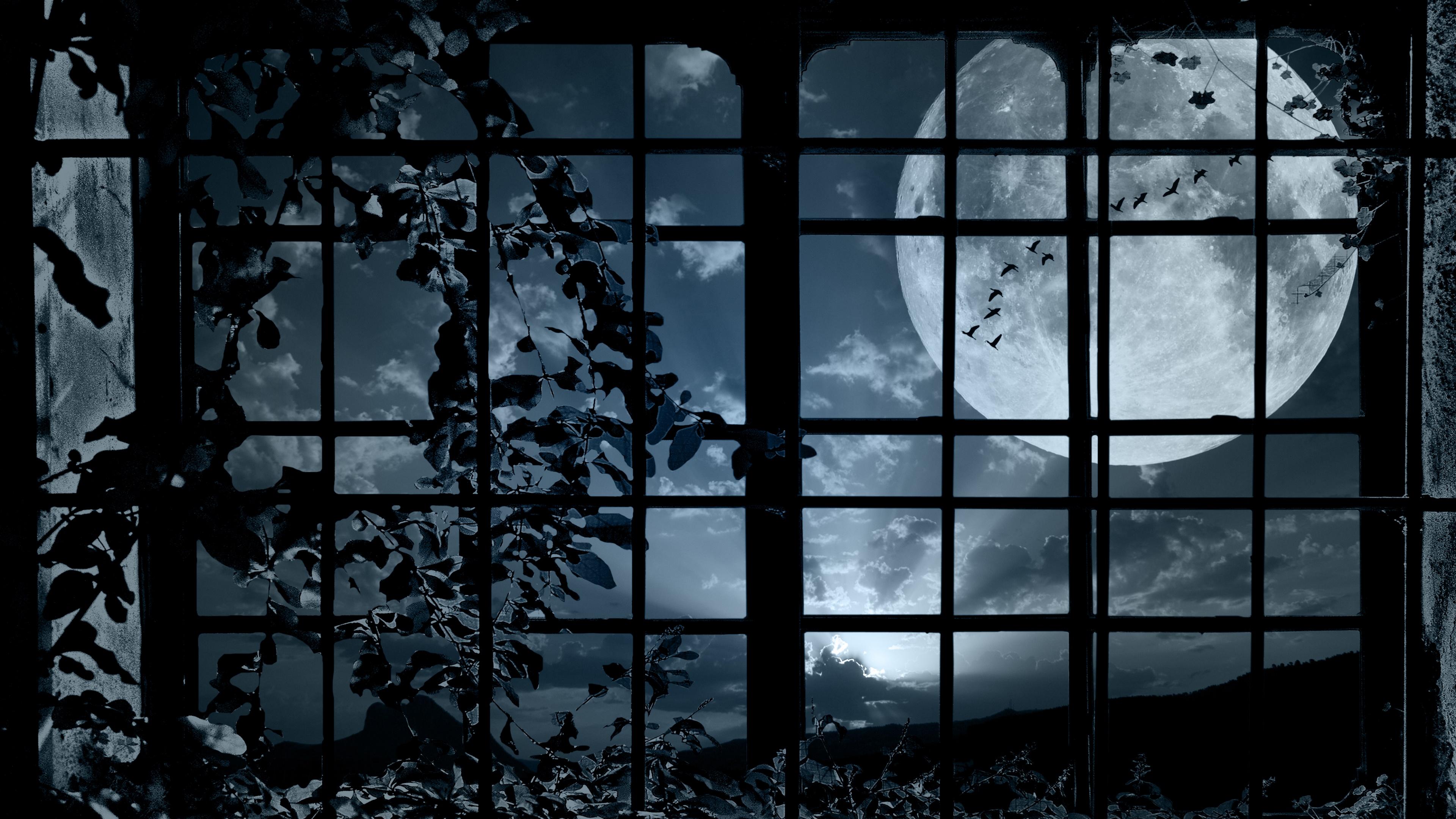Full moon from a window wallpaper