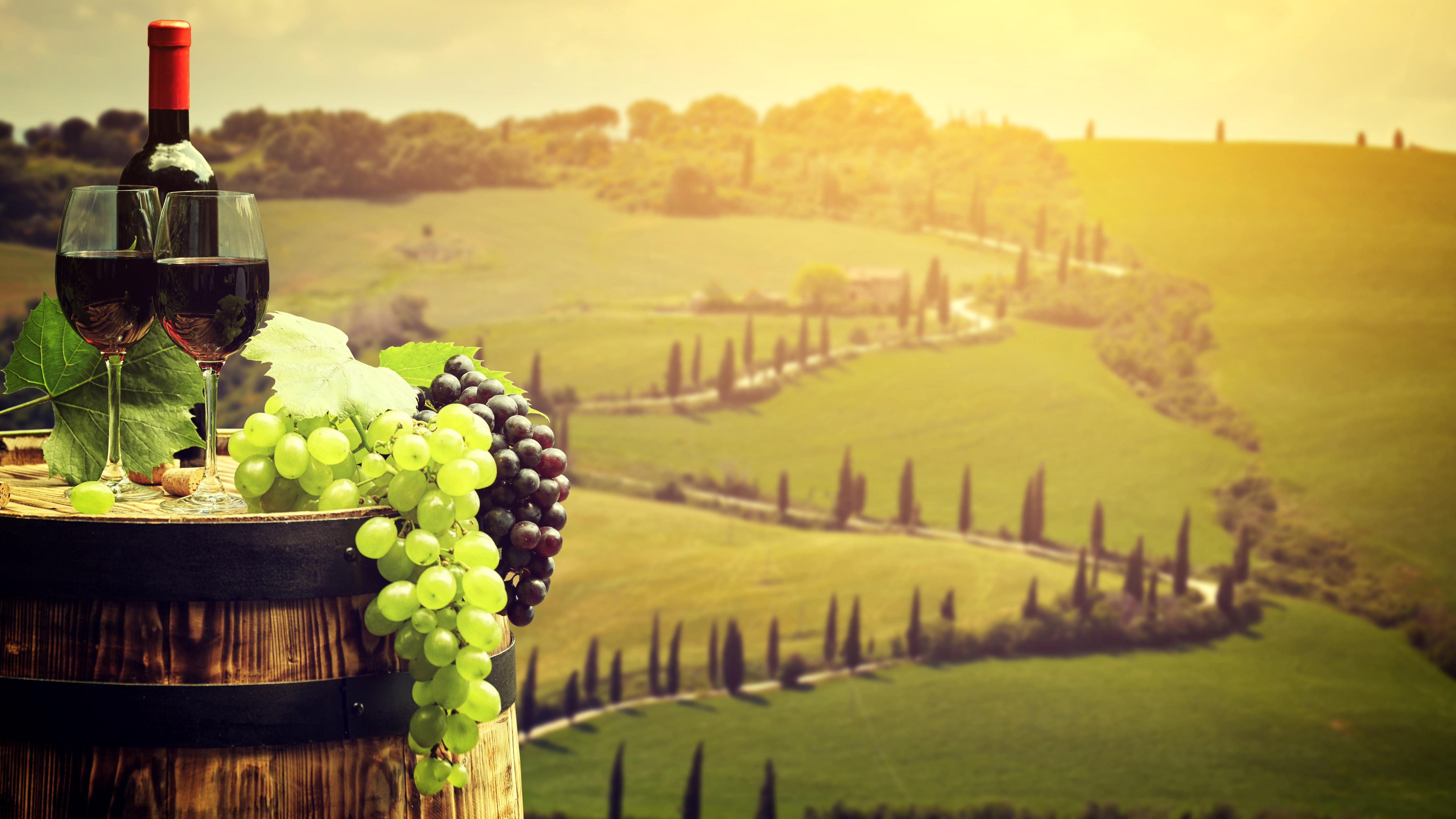 Grapes and wine wallpaper