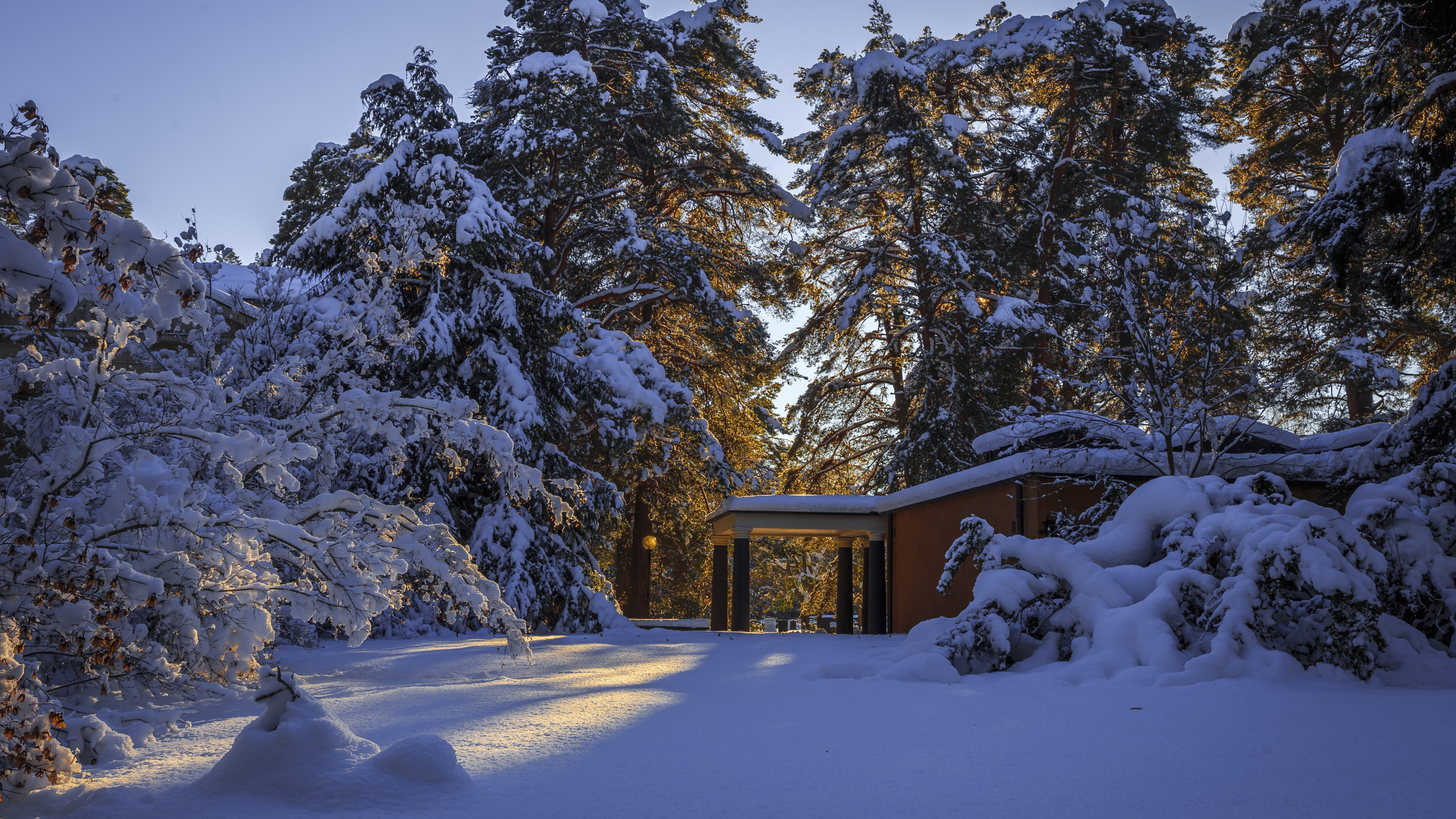 House in the snowy forest wallpaper