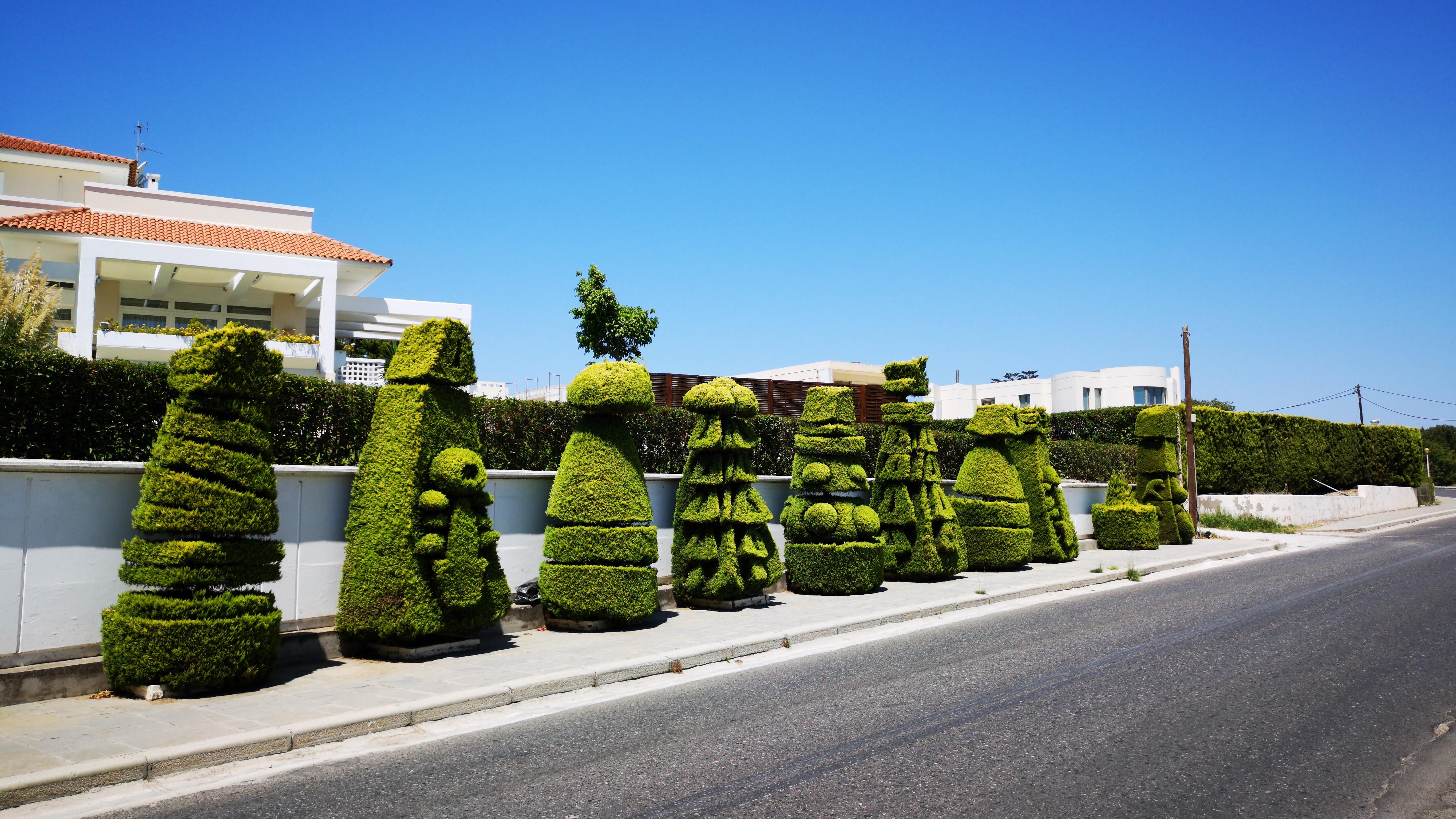 Figure green bushes wallpaper