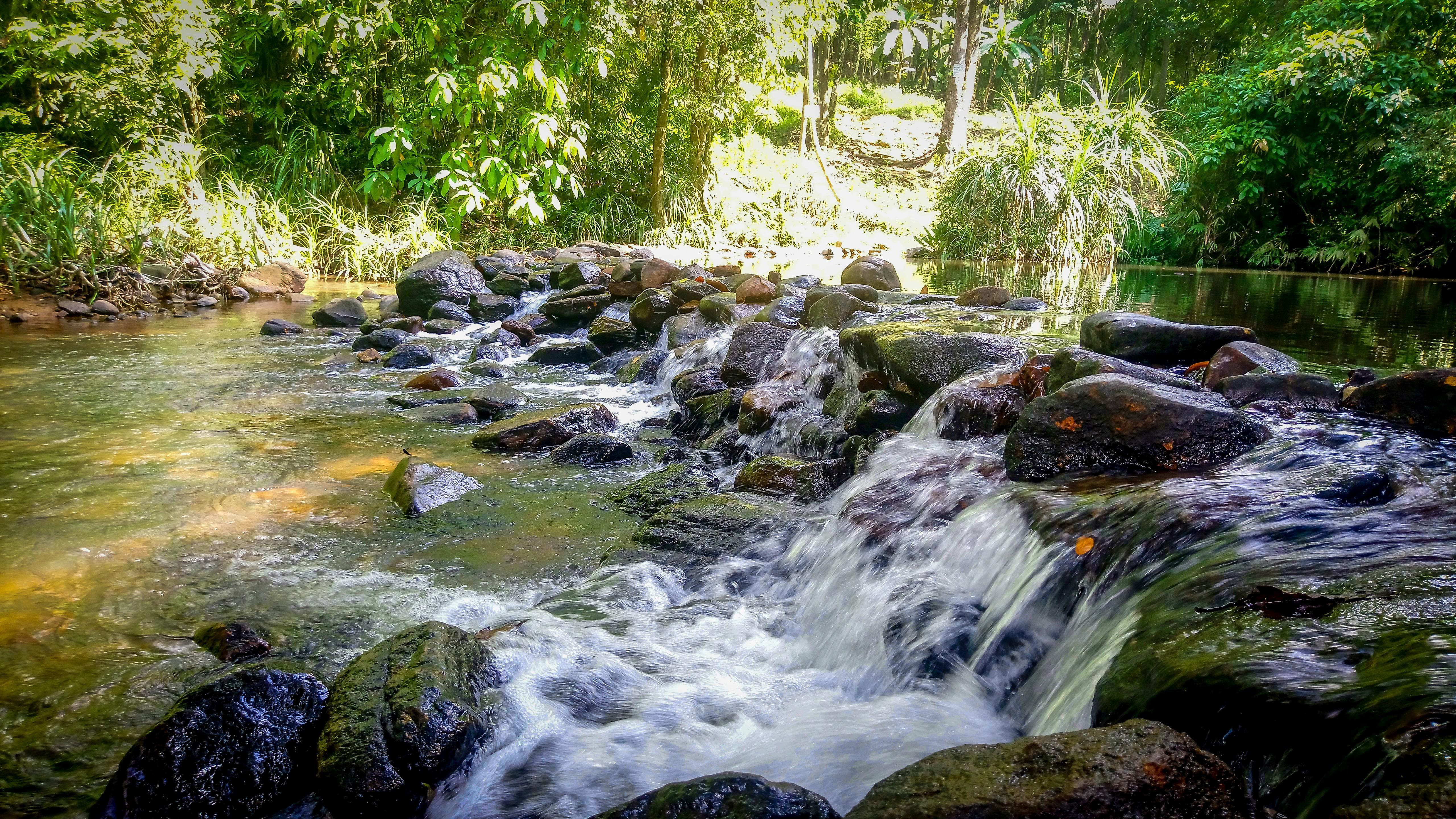 Fresh water streams in sri lanka wallpaper