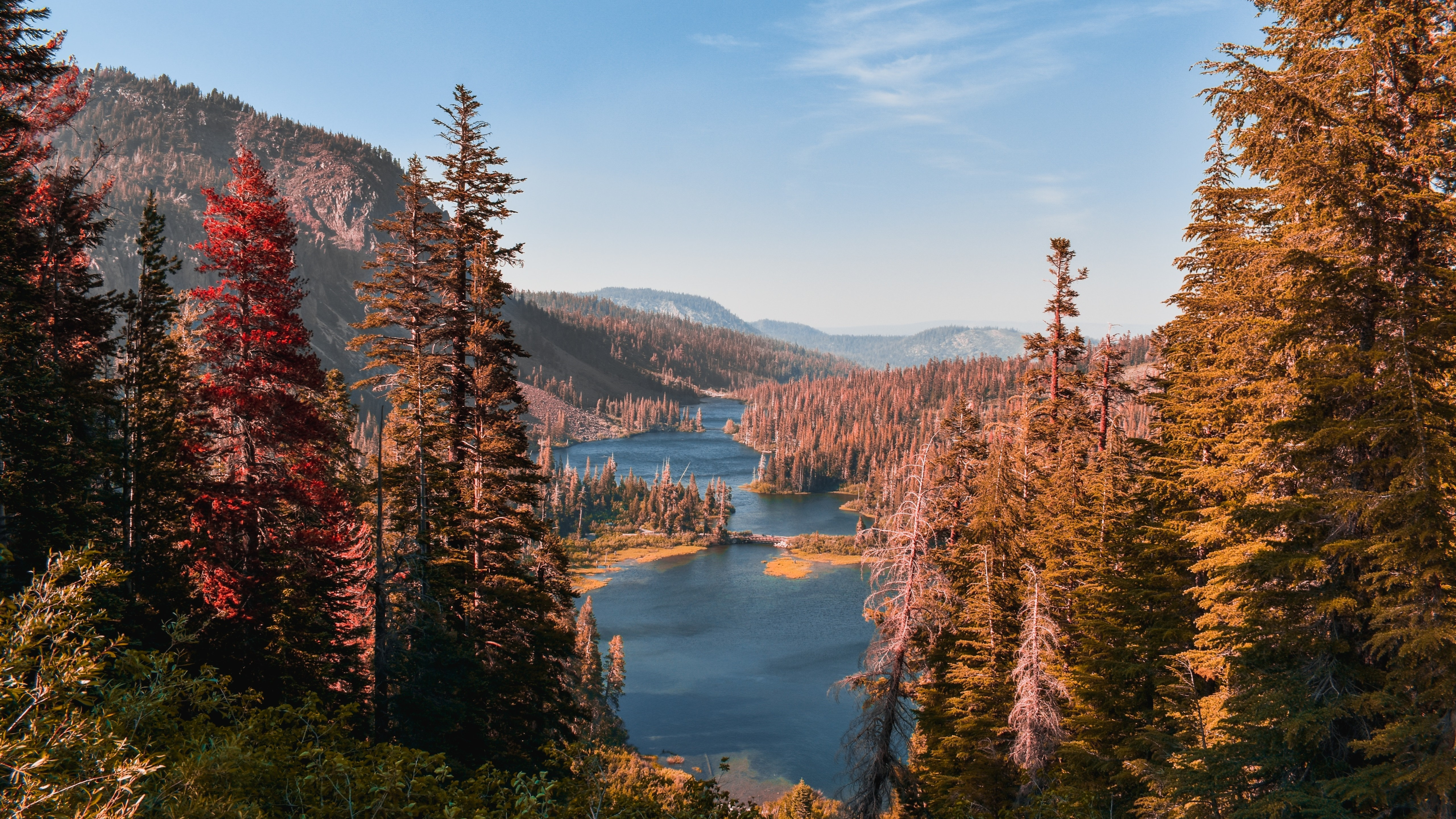 Inyo National Forest wallpaper