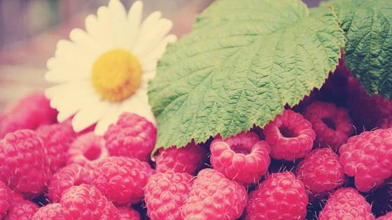 Wallpaper from food category