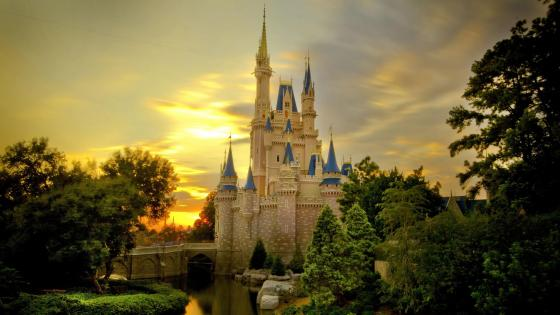 Cinderella Castle in the Magic Kingdom, Disney World wallpaper