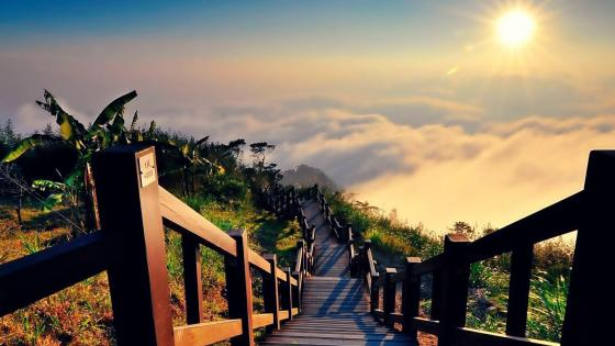 Stairway to heaven - Yushan National Park, Taiwan wallpaper
