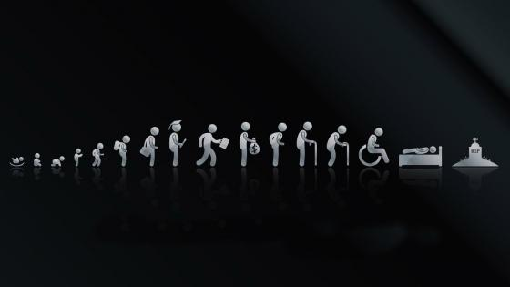 Funny life cycle evolution wallpaper