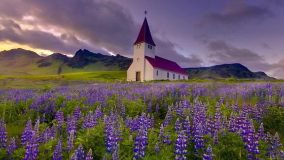 Vik i Myrdal Church in Iceland wallpaper