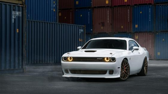 White Dodge Challenger wallpaper