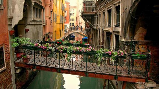 Bridges over the canal, Venice wallpaper