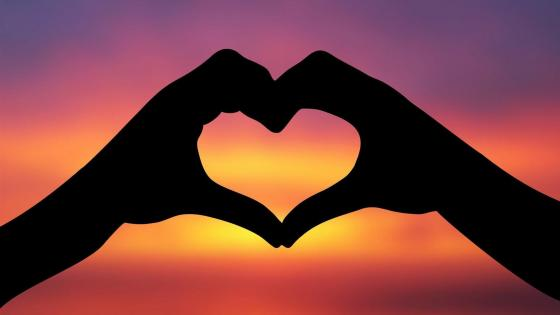 Hand heart silhouette in the sunset wallpaper