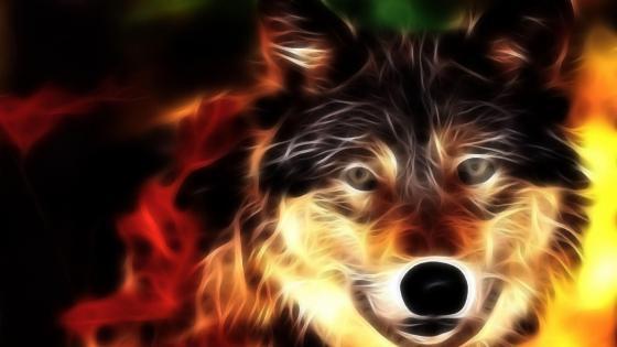 Wolf - Digital art  wallpaper