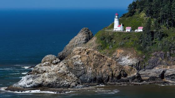 Heceta Head Lighthouse wallpaper