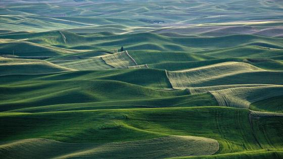 Rolling hills of Washington wallpaper