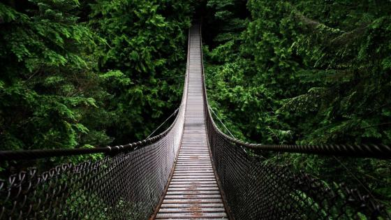Lynn Canyon Suspension Bridge - Canada wallpaper