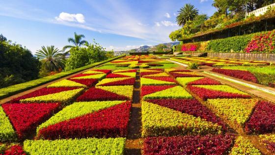 Madeira Botanical Garden wallpaper