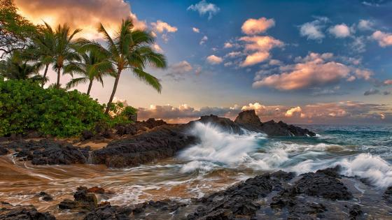 Coast of Maui wallpaper