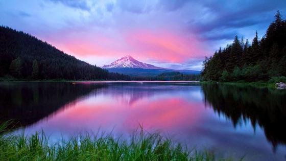 Mount Hood view from Trillium Lake wallpaper