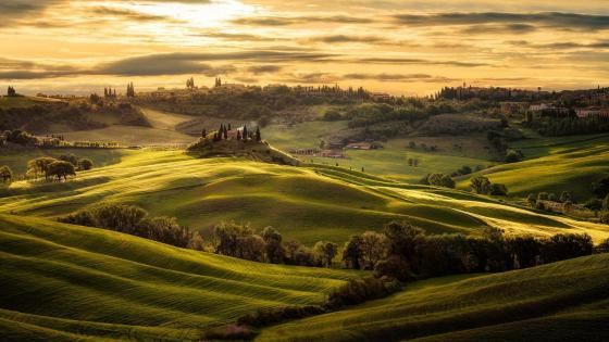 Val d'Orcia rolling hills (Tuscany) wallpaper