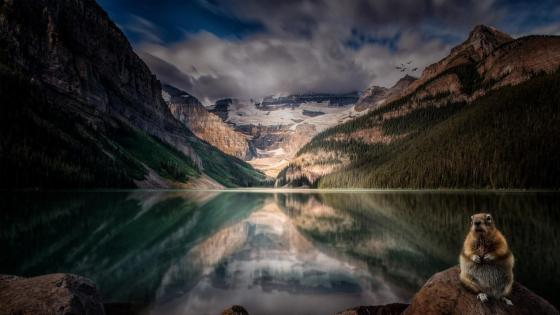 Victoria Glacier reflected in the Lake Louise, Canada wallpaper