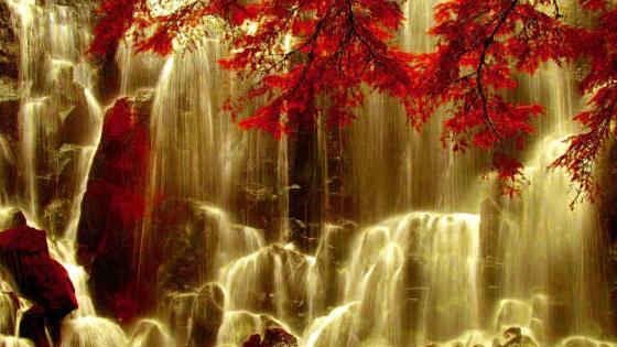 Ramona Falls in Mount Hood wallpaper